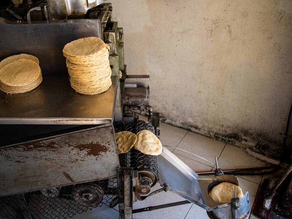 proceso-de-produccion-de-la-tortilla.jpg