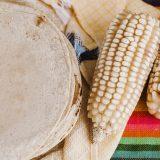 ¿Qué vitaminas tiene la tortilla que resaltan las bases de TIA?