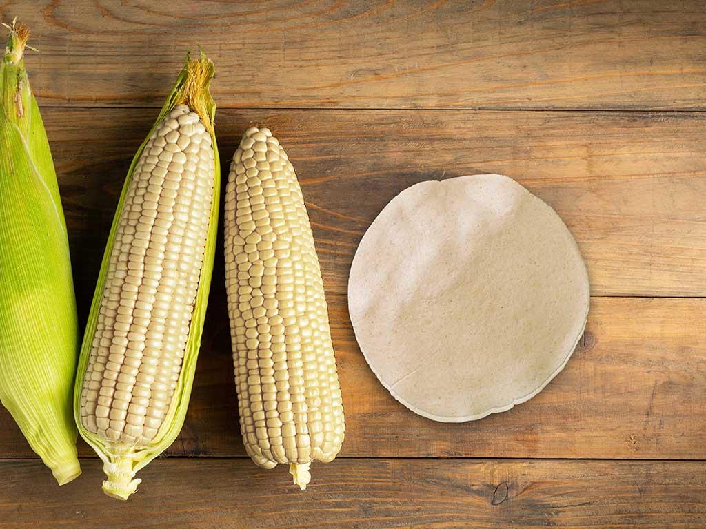 la-importancia-del-maiz-en-la-dieta-mexicana.jpg