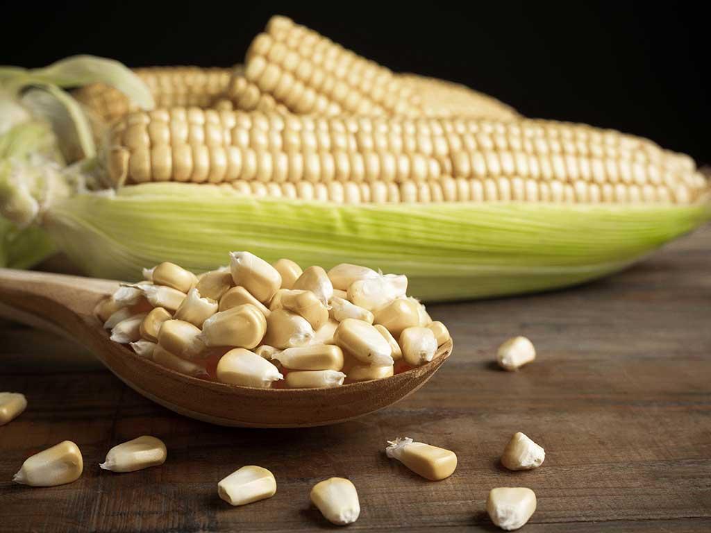 nutrientes-del-maiz-complemento-perfecto.jpg